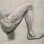 rodilla-dr-cugat